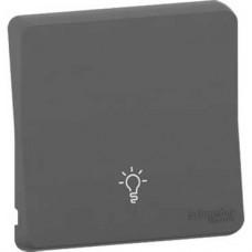 Enjoliveur avec symbôle lumière - IP55 - IK08 - gris