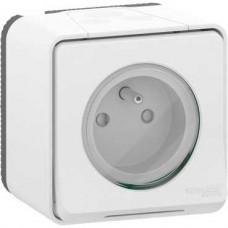 Prise de courant 2P+T - saillie - IP55 IK08 - connex auto - blanc